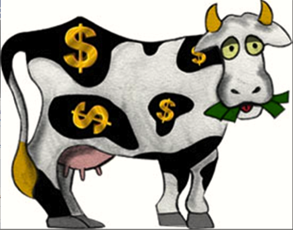 THE HSUS CASH COW