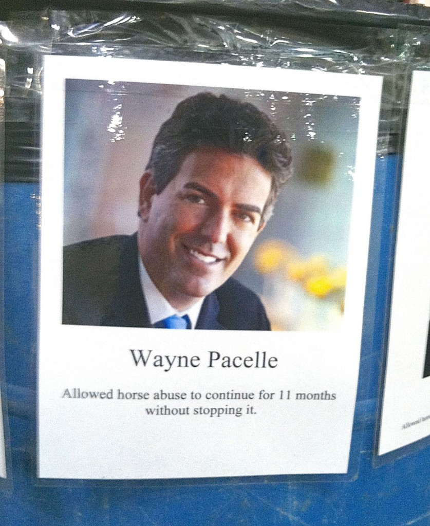 Wayne Pacelle - CEO, Humane Society of the United States