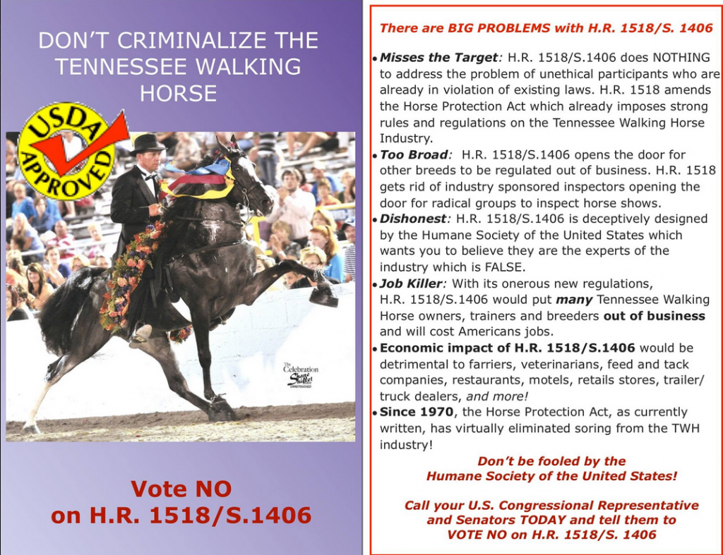 "TRAINER BRANDYE MILLS UP ON MR. HEISMAN OWNED BY RANDALL BASKIN IS ""POSTER HORSE"" FOR ""USDA APPROVED"" CAMPAIGN BEING MOUNTED BY THE CAVALRY GROUP AGAINST HR 1518/S. 1406 TO STOP HORSE SORING"