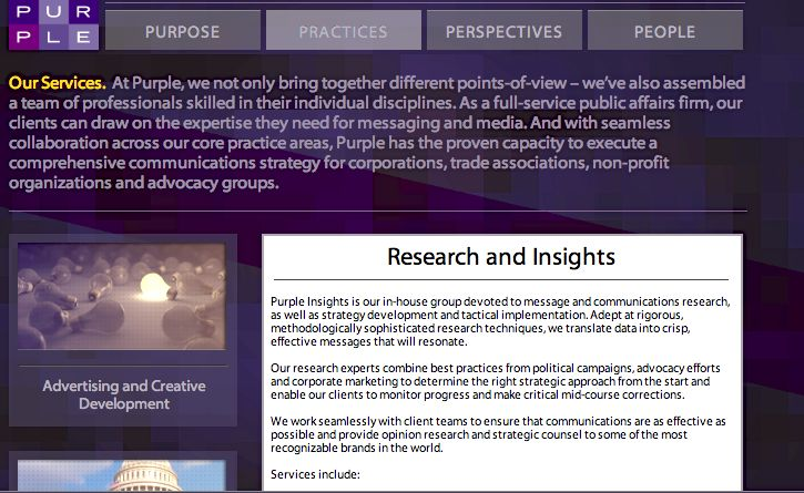 PURPLE INSIGHTS - PART OF PURPLE STRATEGIES