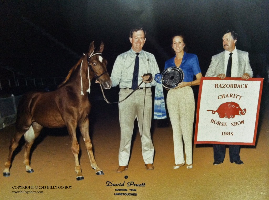 WEANLING CHAMPION HALLELUJAH'S MAESTRO, CLANT M. SEAY, NANCY LINDSEY, RAZORBACK CHARITY HORSE SHOW; LITTLE ROCK, ARKANSAS
