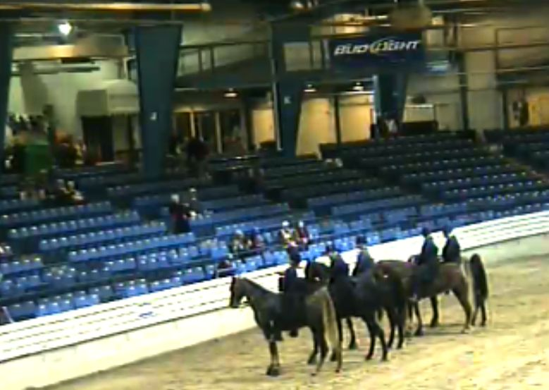 CROWD IN LINEUP FOR CLASS 44 - 4 YEAR OPEN TRAINERS RIDERS CUP