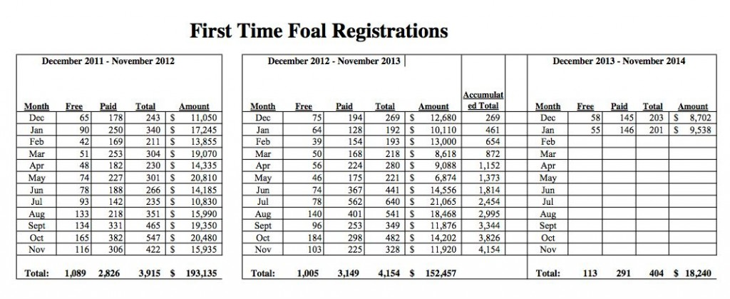 FIRST TIME FOAL REGISTRATIONS
