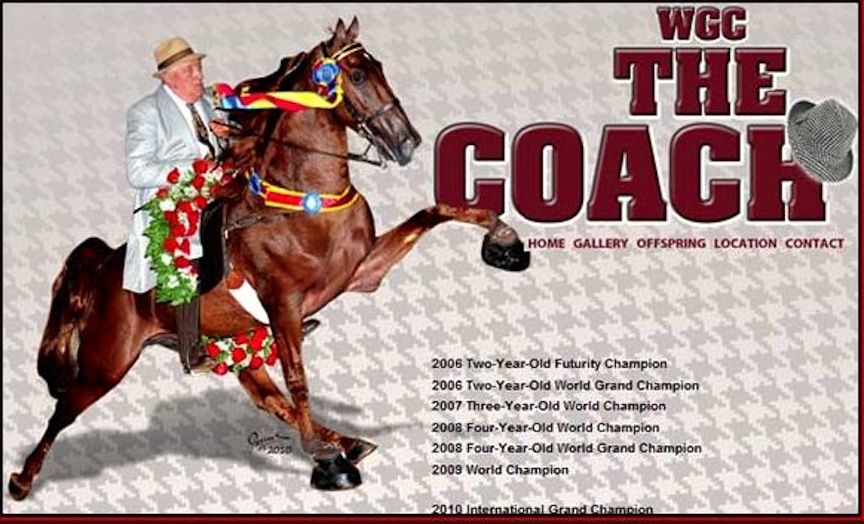 """THE COACH"", BILLY GRAY UP"