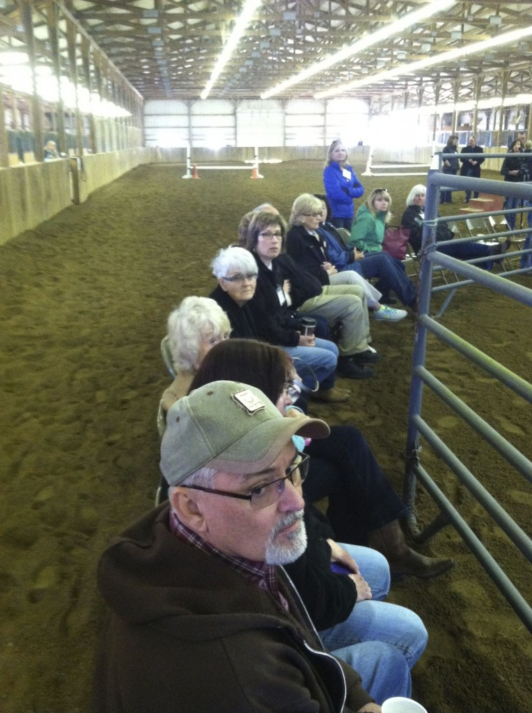 FOLKS GETTING READY FOR GARY TO DO SOME ROUND PEN COACHING.