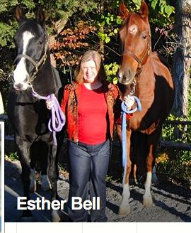 ESTER BELL - HER RESCUED TENNESSEE WALKING HORSES