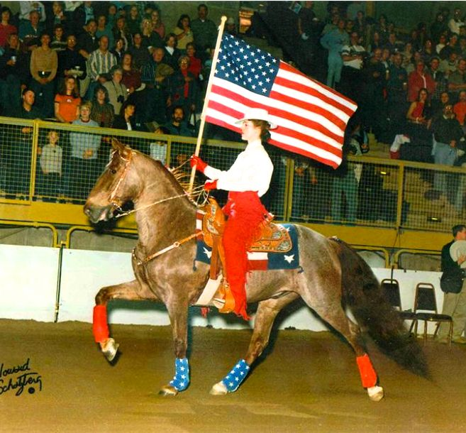 The Roan Flash, National and National Grand Champion, owned by Jana & Judy Babuszcak of Texas - 25 years old and going strong !