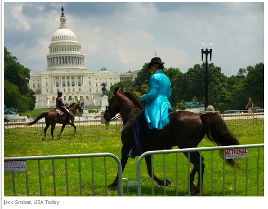 THIS PICTURE SAYS IT ALL - NATURAL TENNESSEE WALKING HORSES HAVE THE SUPPORT OF THE UNITED STATES OF AMERICA