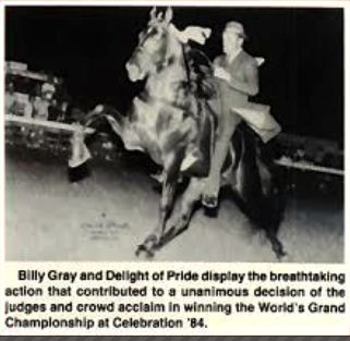 BILLY GRAY UP ON 'DELIGHT OF PRIDE' OWNED BY DR. ANDREW SISK FAMILY OF COLUMBIA, TN