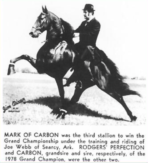 "1978 WORLD GRAND CHAMPION ""MARK OF CARBON"" TRAINED BY JOE WEBB"