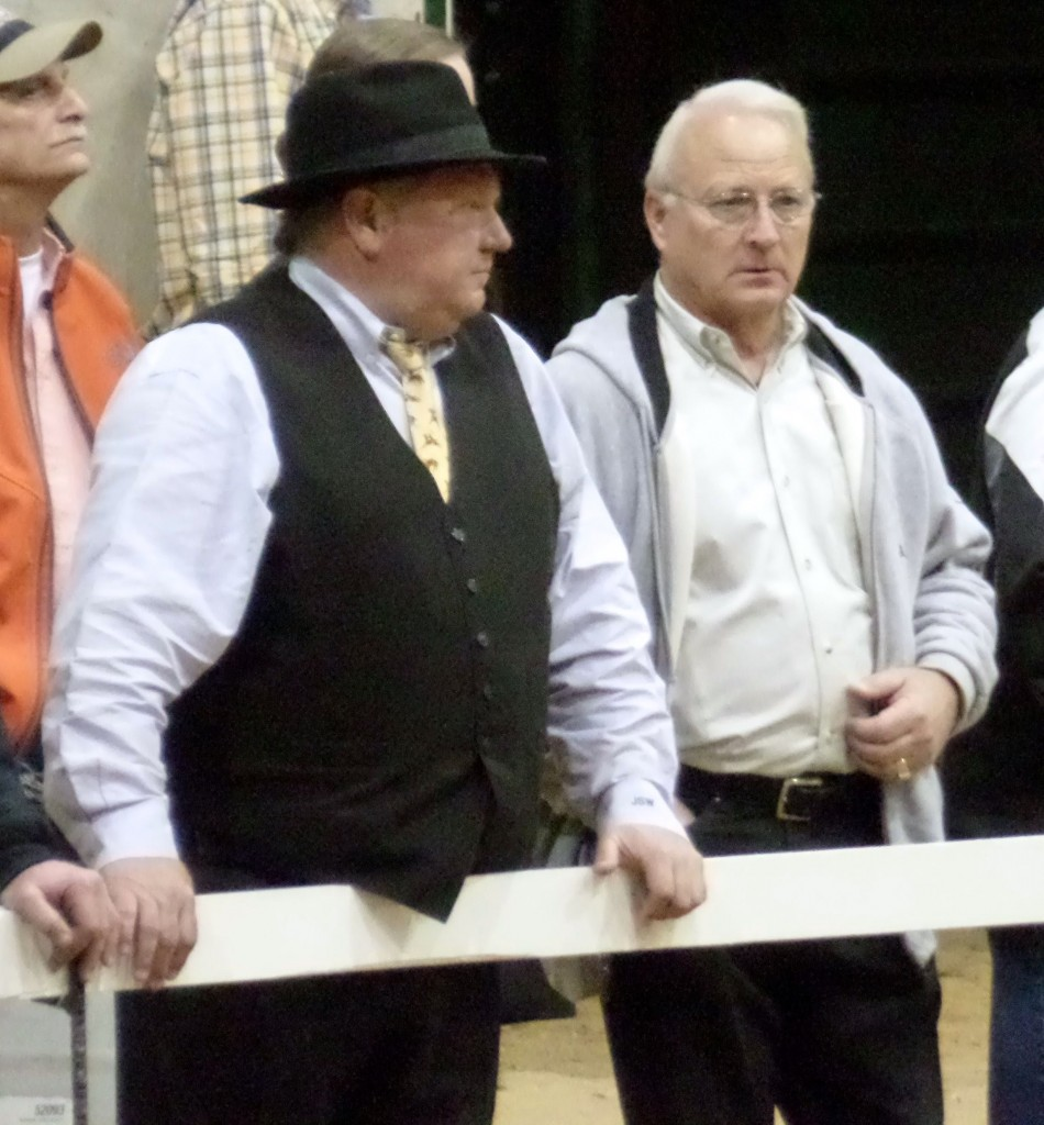 SERIAL HORSE ABUSER MR JACK WAY AND HORSE SHOW MANAGER MR. ROBERT TAYLOR
