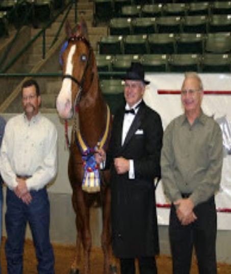 "(Left to Right) Unidentified person,  ""Big Lick"" Horse Abuser Mr. David Landrum, Mr. Robert Taylor"