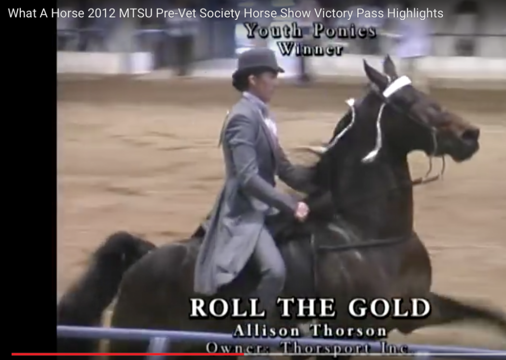 "ALLISON THORSON, THORSPORT, INC., UP ON ""ROLL THE GOLD"" AT MTSU PRE-VET SOCIETY HORSE SHOW"
