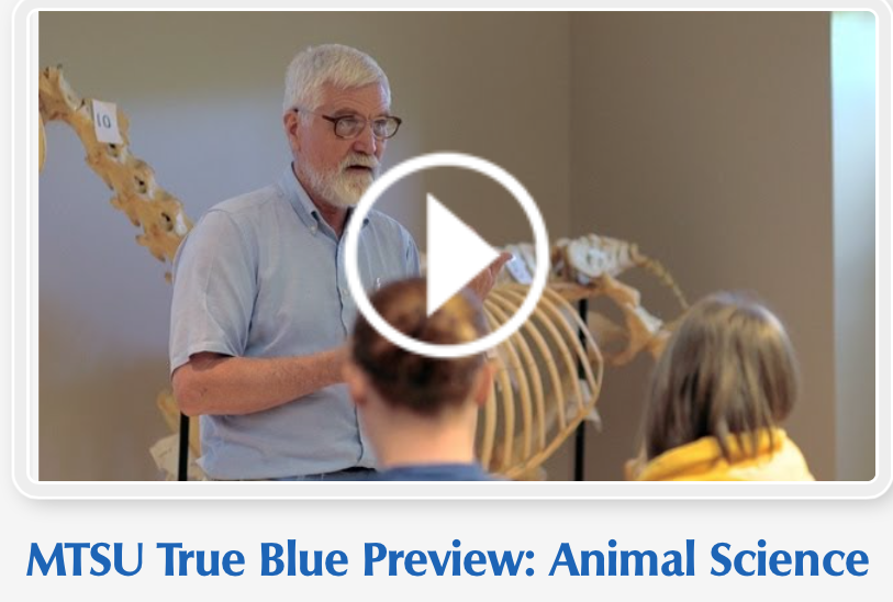 EQUINE VET DR. JOHN HAFFNER, MTSU (MIDDLE TENNESSEE STATE UNIVERSITY) HORSE SCIEF PROFESSOR