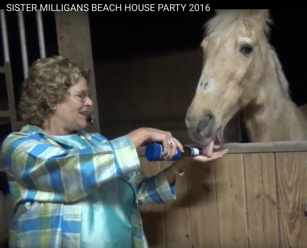 "Walking Horse - KY You Tube Ms. Martha ""Sister"" Milligan Feeding Beer To Horse At Open House For ""Big Lickers"" At The Panama City Beach ""Big Lick"" Horse Show"