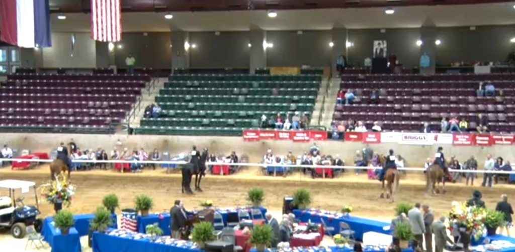 FRIDAY, APRIL 1, 2016, MISSISSIPPI CHARITY HORSE SHOW