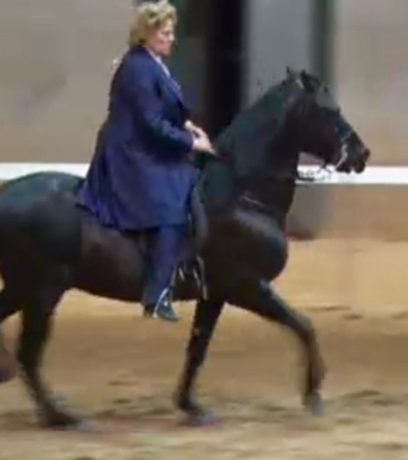"Ms. Martha ""Sister"" Milligan - Exhibiting a Paso Fino Horse on Friday, April 1, 2016"